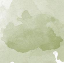 Pigmentenflecken