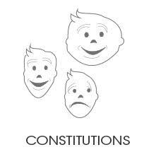 Constitutiion